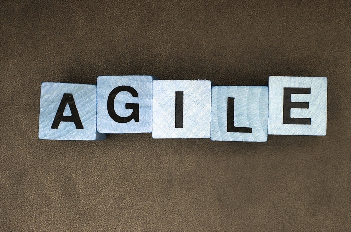 Agile Methodology in Digital Products